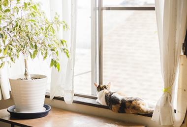 「かんたんマドリモ」とはYKK APから発売されているリフォーム用の窓です。